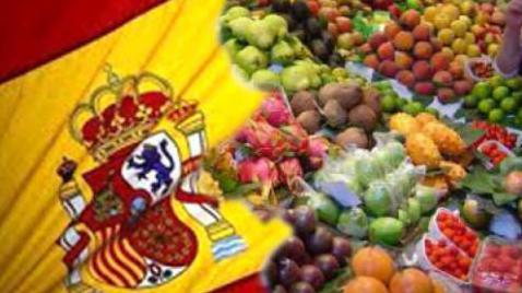 Alimentos típicos de España