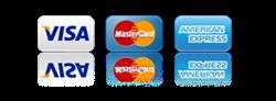 Pagos seguros con tarjeta de crédito, débito o Paypal (SSL)